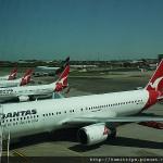 澳洲航空SYD-ADL  QF747 好多袋鼠呀>///