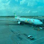 BR5288 長榮航空半年來載客率最高的航班: TPE-TPE